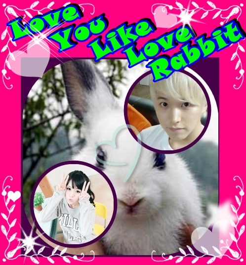 love you like love rabbit