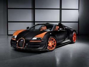 2013-Bugatti-Veyron-WRC-Limited-Edition-2