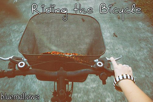 riding the bicycle